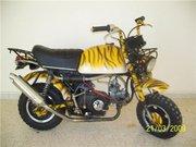 Honda Gorilla Tiger 110cc